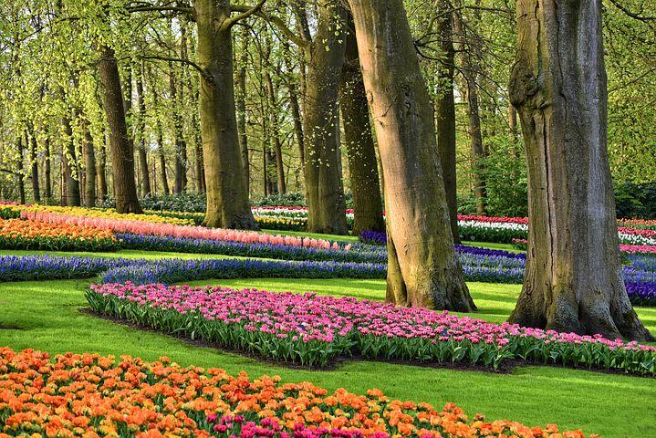 Holland med blomsterparaden